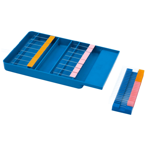 https://plastjoo.com/wp-content/uploads/2020/12/Staining-Tray-with-Slide-Holder-500x500.png